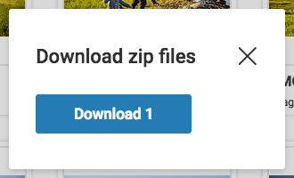download-zip.jpg